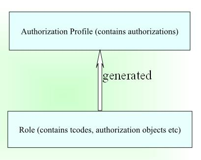 Elements in SAP Authorization