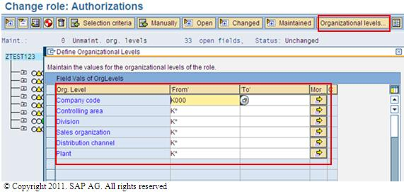 Organizational levels ( org levels in SAP )