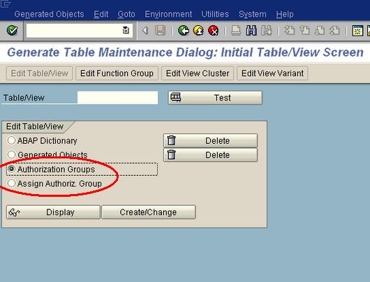 SAP Table Authorization